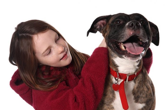 Bringing a Dog Home With Children